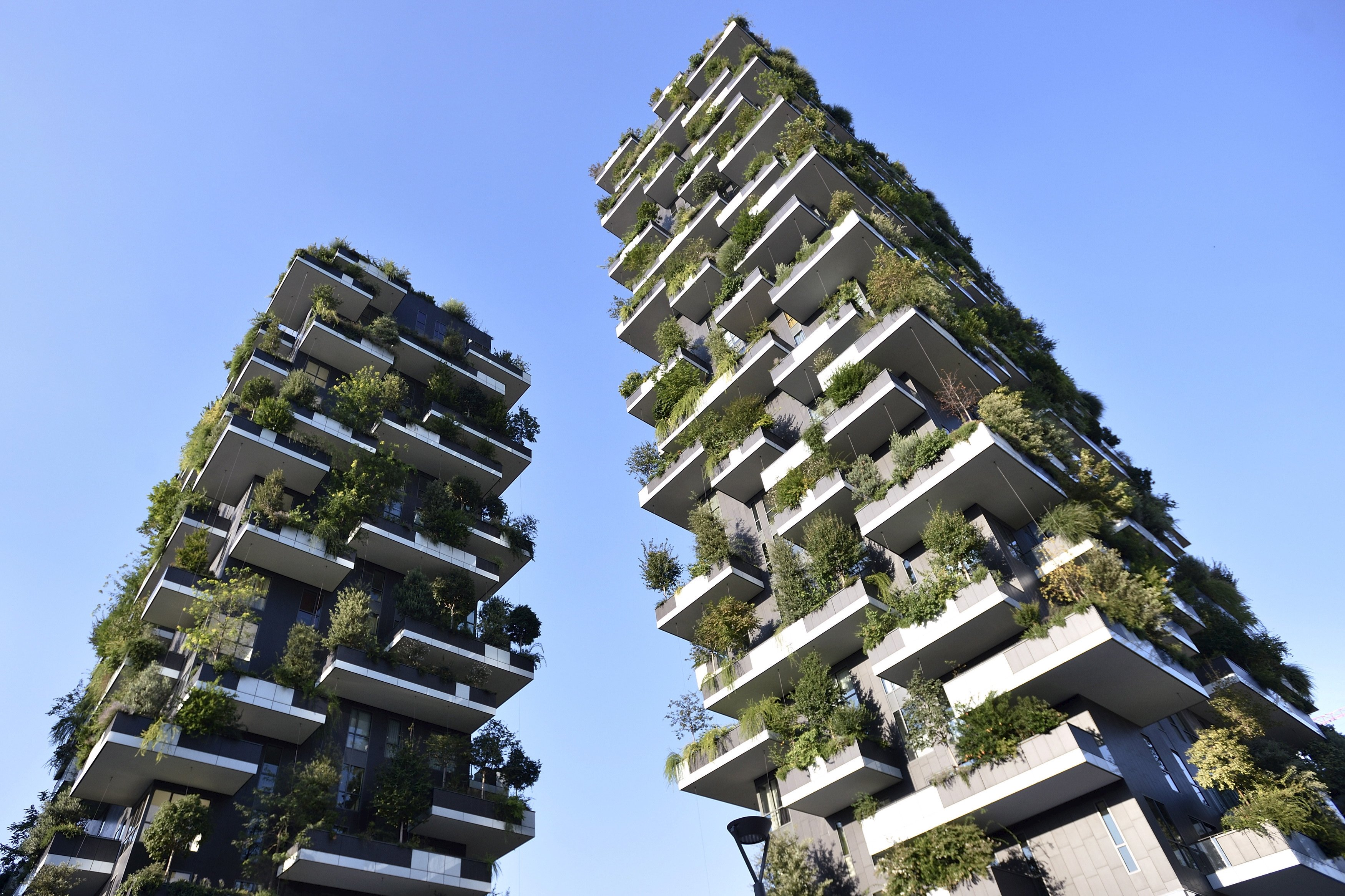 Environmental Sustainability in a Green Architecture Outlook
